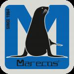 L_MARECOS_QUAD_PAPEL